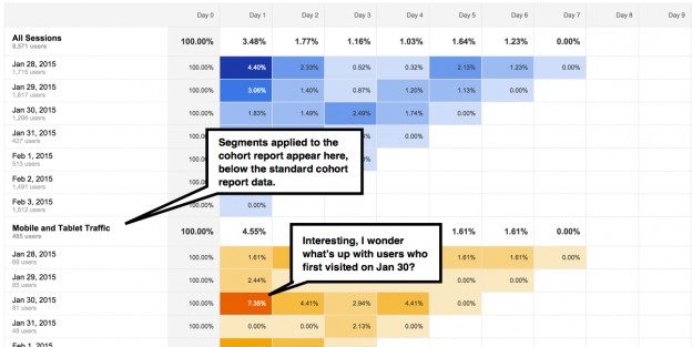 cohort analysis by segment